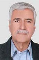 محمد حیدر زاده